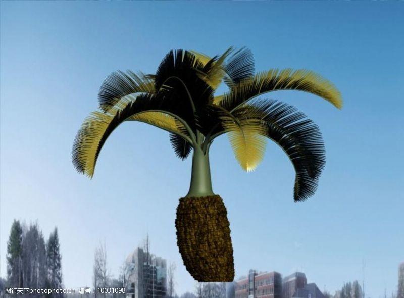 花草模型热带植物模型图片