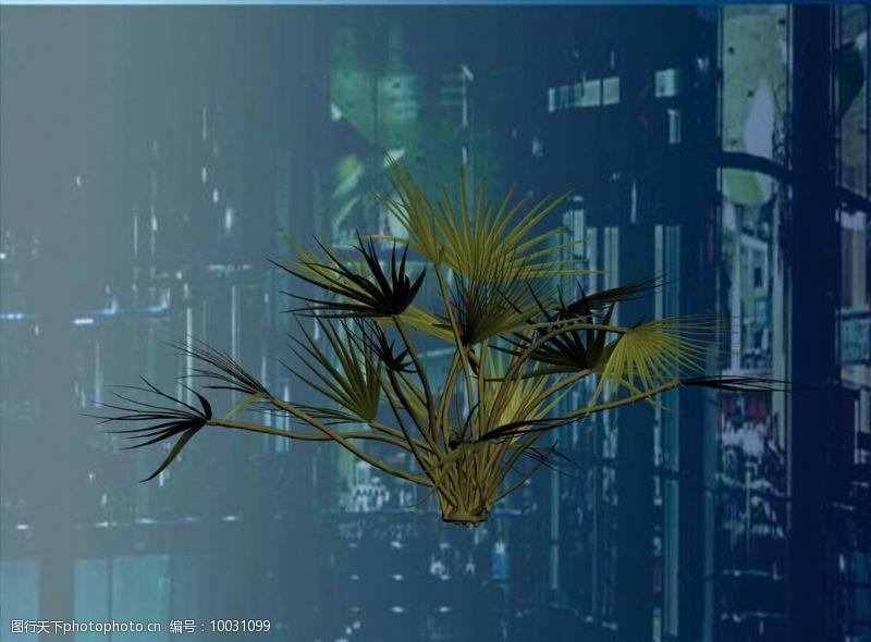 花草模型树3D模型图片