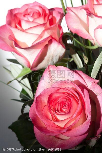 复合材料玫瑰