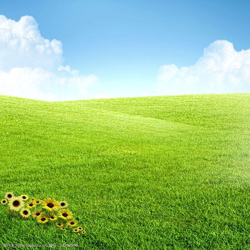 草地蓝天花朵绿色草地素材