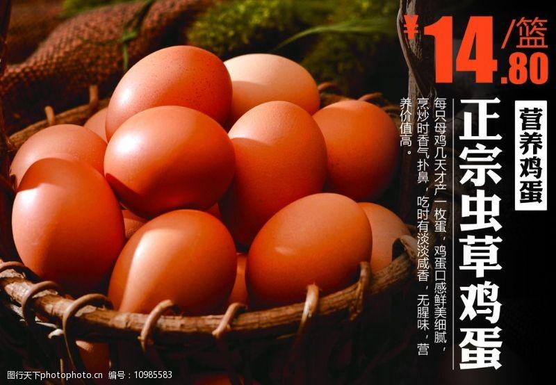 鸡蛋价格鸡蛋图片
