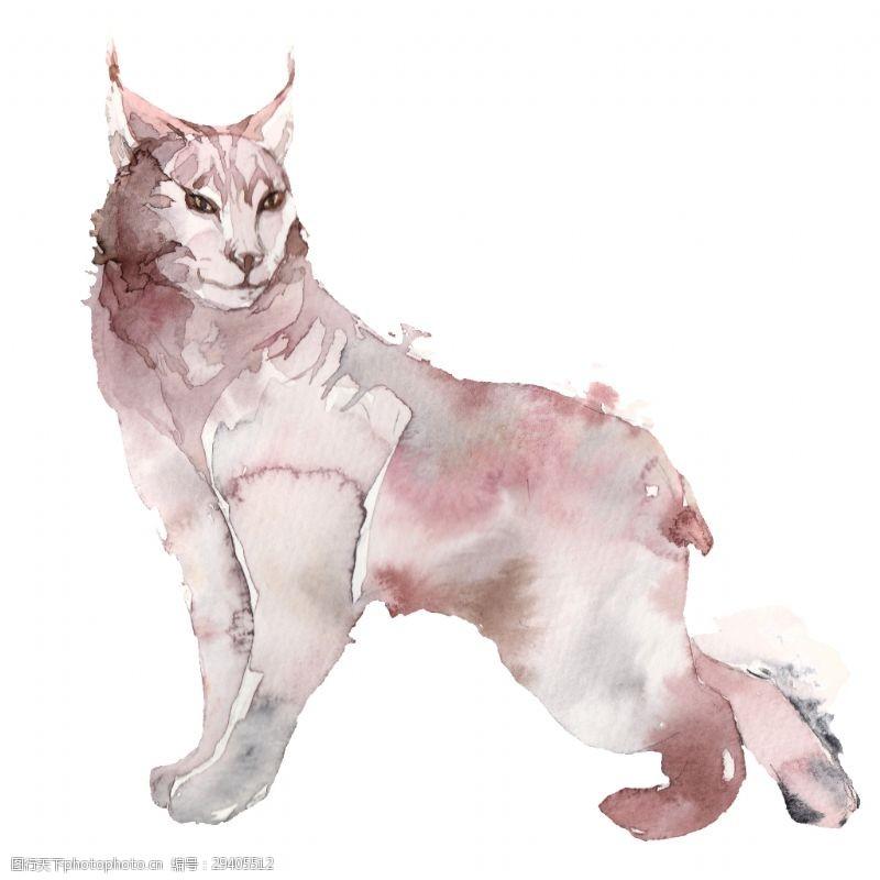 创意猫咪透明素材水彩