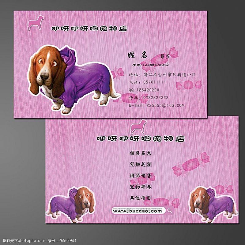 宠物诊所名片可爱宠物名片图片模板