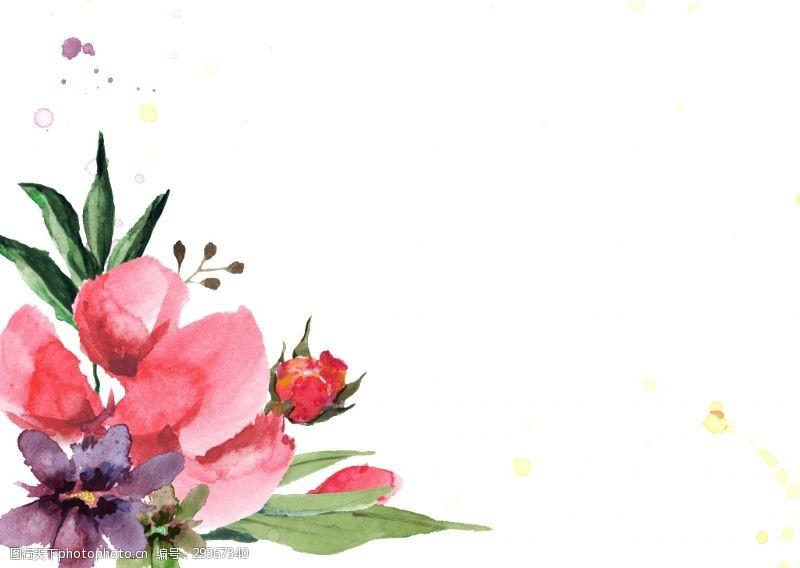 手绘红花花草装饰素材