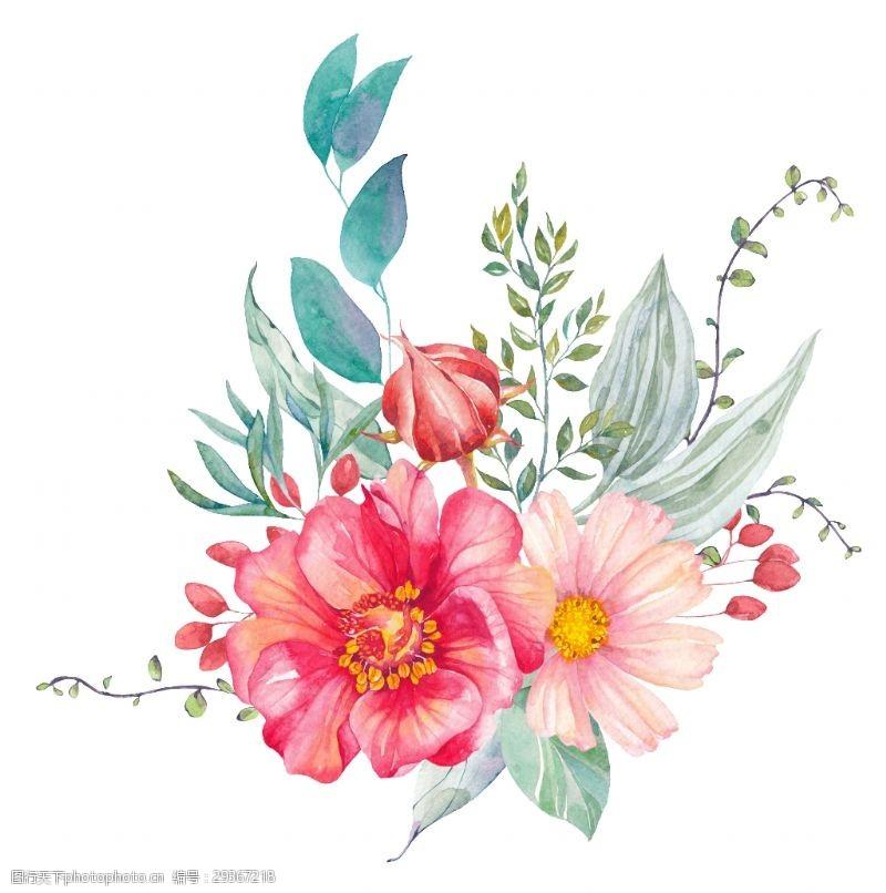 手绘红花绿叶花草装饰素材