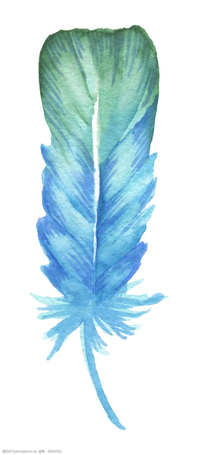 蓝绿搭配炫彩羽毛图片素材